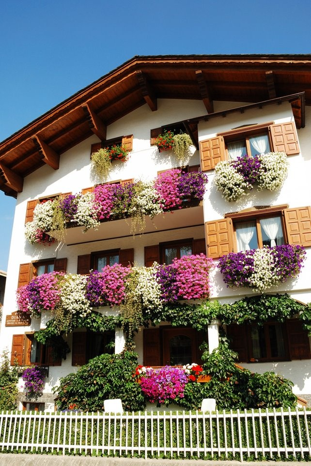 GERMANY   ~  another pic of abundant window boxes blooming profusely with lovely colors