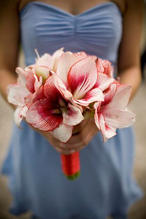 Amaryllis is available during winter...not that you would do a whole bouquet of it, but it may be a pretty option to throw a little color in!: