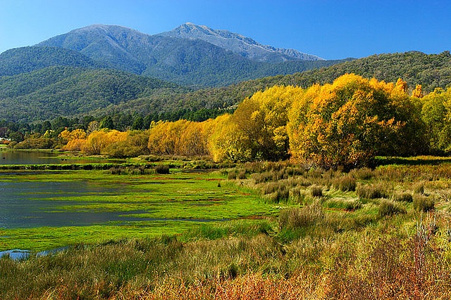 Mount Beauty, Victoria, Australia. Have ridden through here