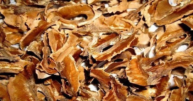 A dió igencsak egészséges, és a zöld héjától, a dióbélen keresztül a csontos héjig szinte minden része felhasználható. Azonban azt már kevesen