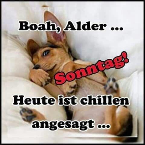 morgen zusammen - http://guten-morgen-bilder.de/bilder/morgen-zusammen-280/