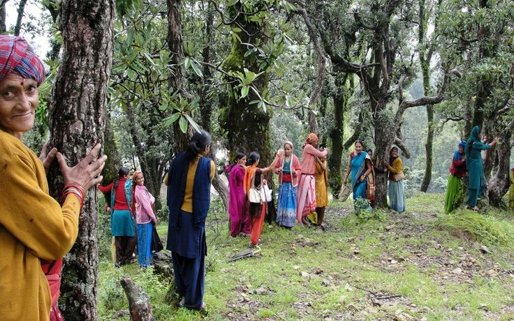 'Chipko Movement' completes 45th anniversary DD News
