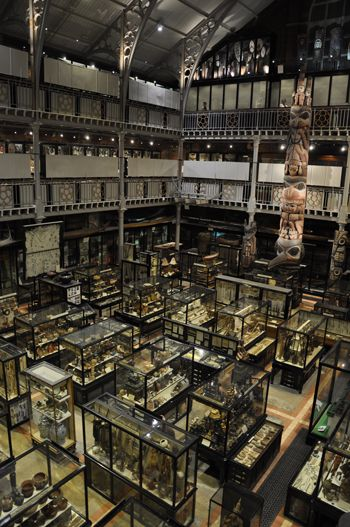 A view of the many display cases of the Pitt Rivers Museum, Oxford University