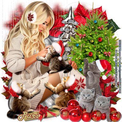 """MI RINCÓN GÓTICO: CT DANIELA E, """"Christmas Cats"""""""