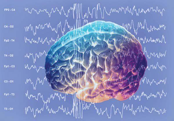 Uwaga! Książki zmieniają mózg