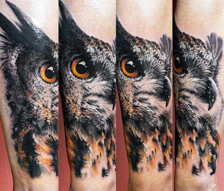 18 best Owl tattoo images on Pinterest