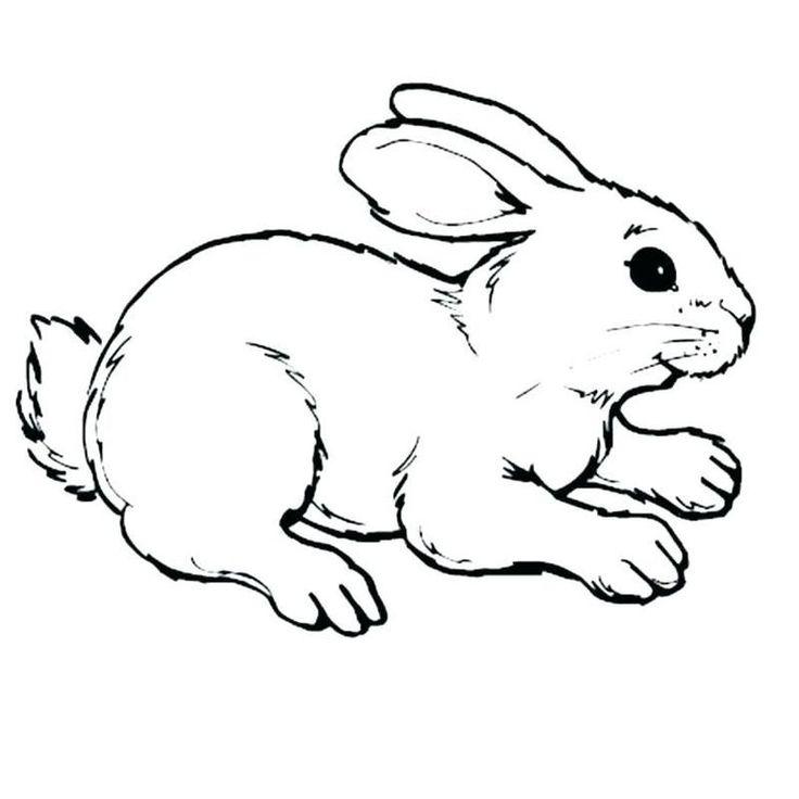 Malvorlagen Von Minecraft Bunny Rabbit En 2020