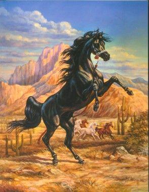 shary b akers equine art the black stallion pinterest