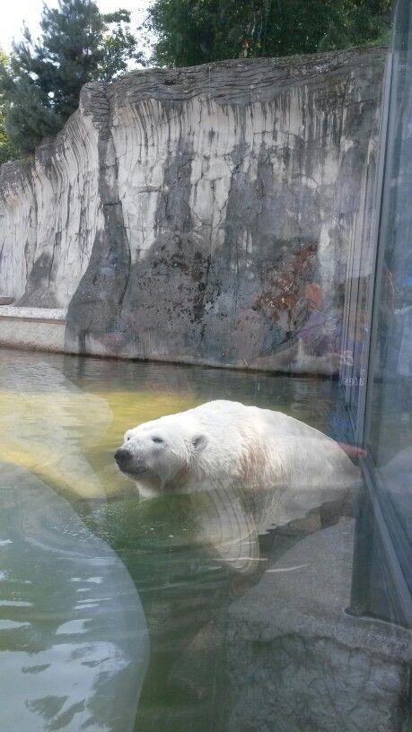 Luxury Karlsruhe Zoo