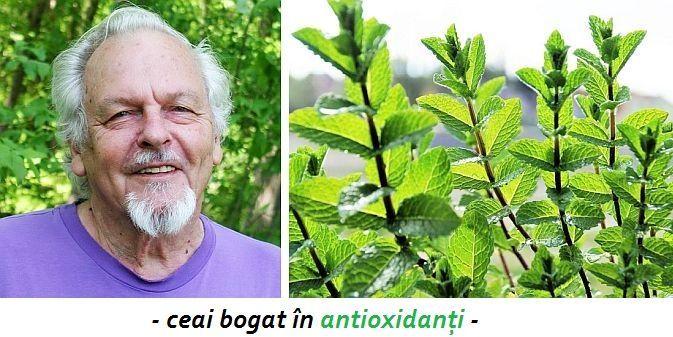 Antioxidanții protejează celulele de stresul oxidativ, care accelerează procesul de îmbătrânire, cauzează boli degenerative, boli cronice, precum cancerul,
