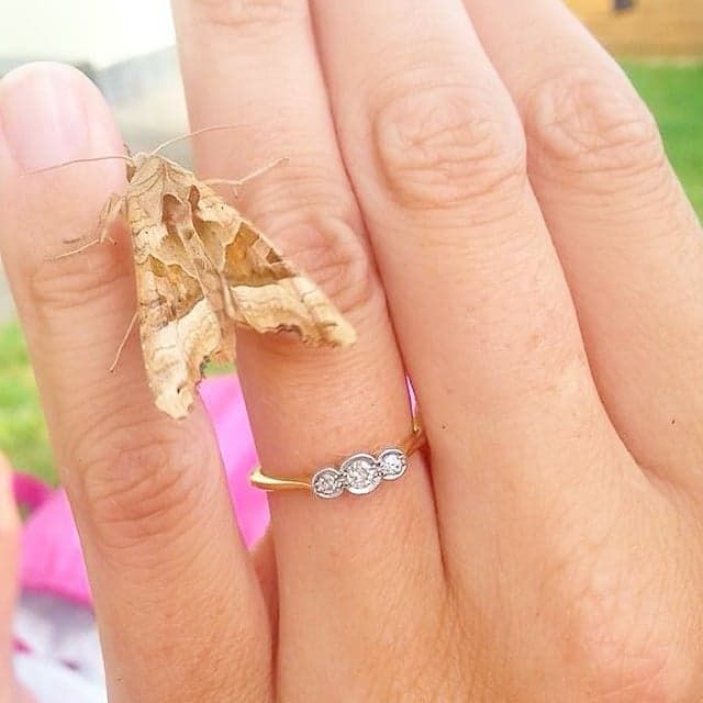 Pin for Later: 30 Small Real-Girl Engagement Rings With Big Impact Vintage Vividness