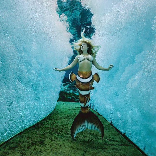 Clownfish tail awesome