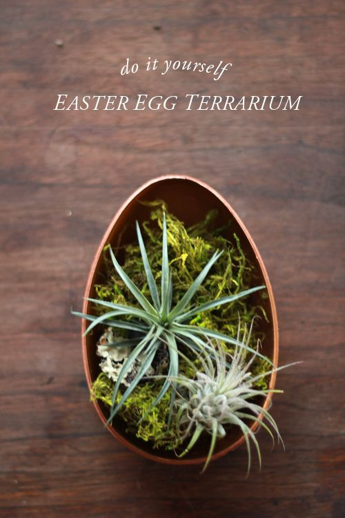 The House That Lars Built.: Easter egg terrarium