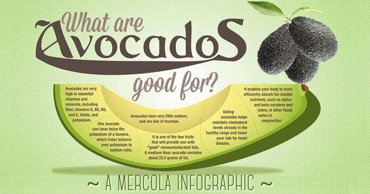 """Discover avocado's uses and benefits through """"The Amazing Avocado: Facts About This Fruit"""" infographic, and learn why this food should be part of your diet."""