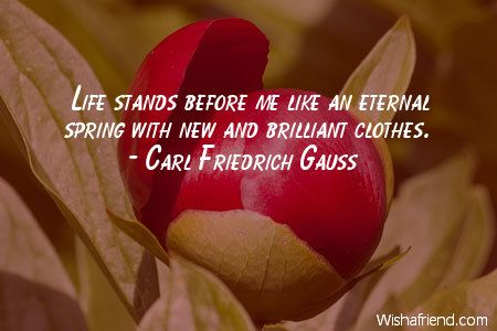 Life stands before me like, Carl Friedrich Gauss Quote