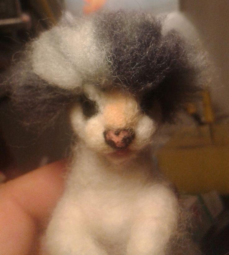cat hair add by annakreativ50