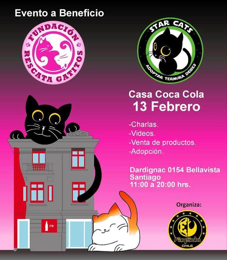 Acompañenos a ir en Beneficio de la Fundación Rescata Gatitos
