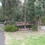 Blue Mountains - Springwood - Fairy Dell/Lawsons Lookout