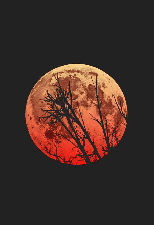 It's so beautiful but it also has a meaning behind it. Throughout history, when blood moons would occur something big usually happened in the world not too long after