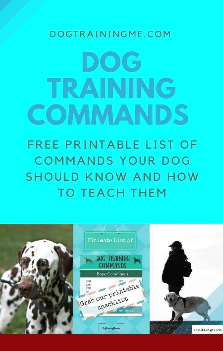 Quick Dog Training Tips Dogtrainingparko 6772414772