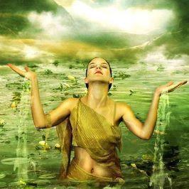 """Képtalálat a következőre: """"pathway to enlightenment"""""""
