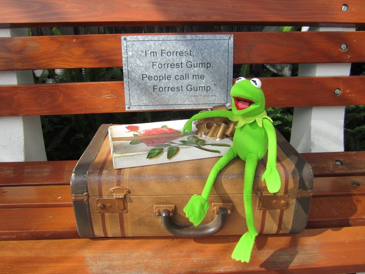 Kermit as Forest Gump in Lahaina, Maui, Hawaii