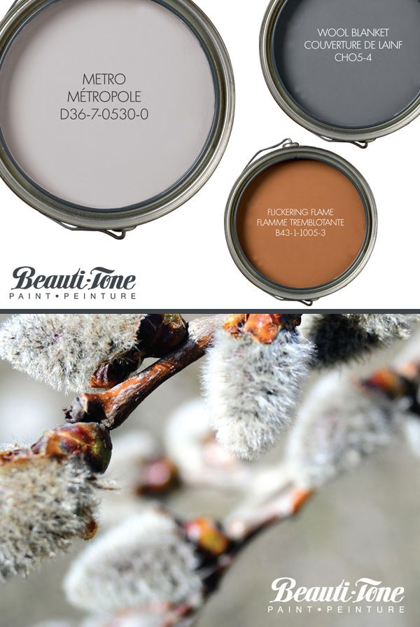 Gray Paint Colours From Beauti Tone