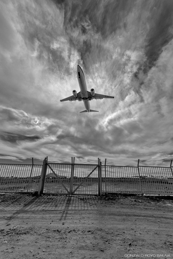 Aterriza como puedas (Airplane! as the film 1980) by Gonzalo Royo on 500px