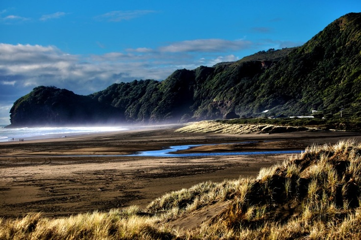 Misty New Zealand Beach
