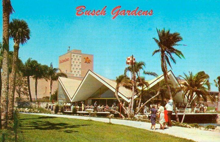 52 Best Retro Florida Images On Pinterest Panama City