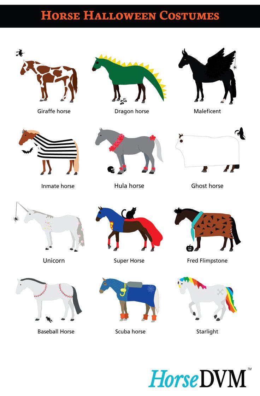 HorseDVM - Horse Halloween Costumes