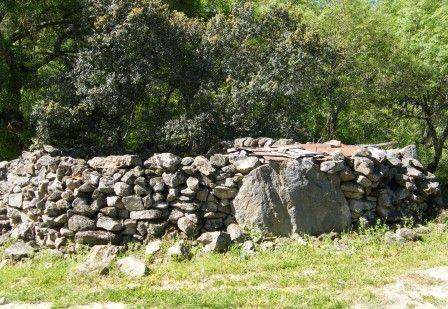 Muro de pedra, com a sempre presente vegetação ribeirinha como fundo, em Vale do Pisão, região do Alentejo, Portugal.  Fotografia: Júlia Galego.  http://entretejodiana.blogs.sapo.pt/tag/crato
