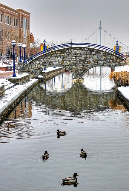 258 best Frederick MD images on Pinterest Frederick maryland, Bill - best of letter of good standing maryland