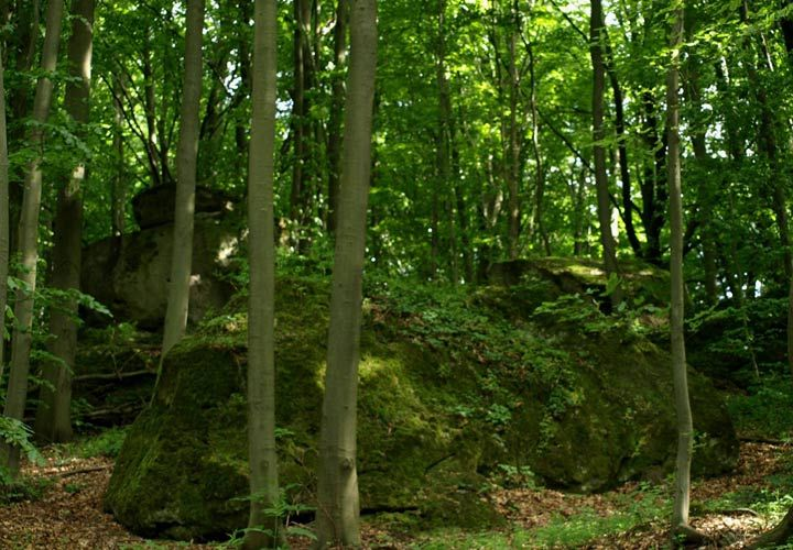 Krasnobród góra Piekielko