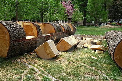 nice log bench! I want this for seating around the fire pit