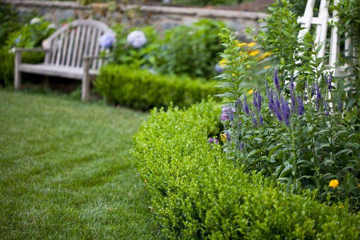 Backyard Garden Box Design