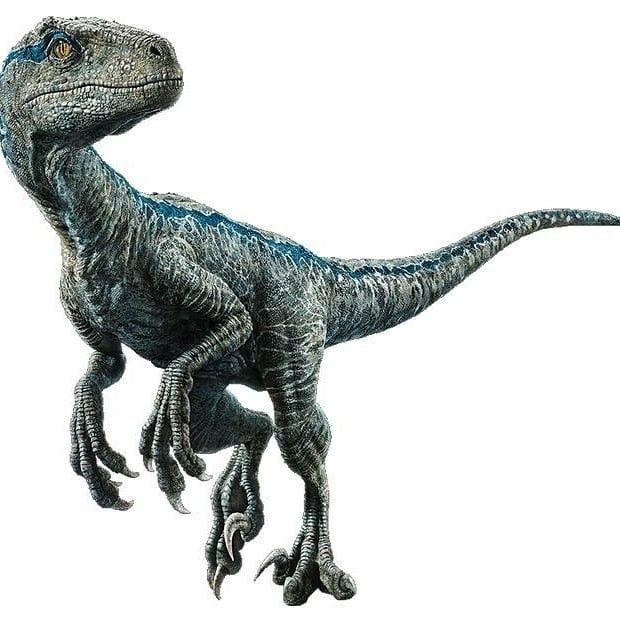 Pin De Godzilla 63 En Jurassic Park World En 2020 Dinosaurio Real Dinosaurio Png Dinosaurios Imagenes Melee 2 talons +9 (2d6+6), bite +9 (1d8+6), foreclaws +7 (1d6+3) special attacks pounce. www pinterest ph