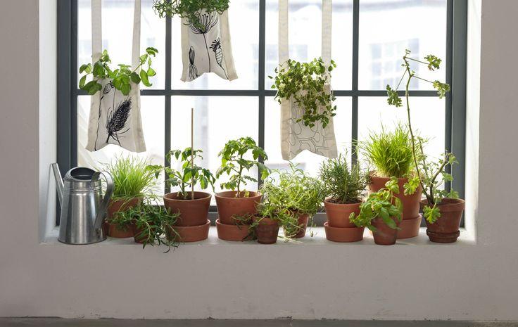 Idee voor binnenshuis tuinieren met hangende tuinzakken gevuld met planten
