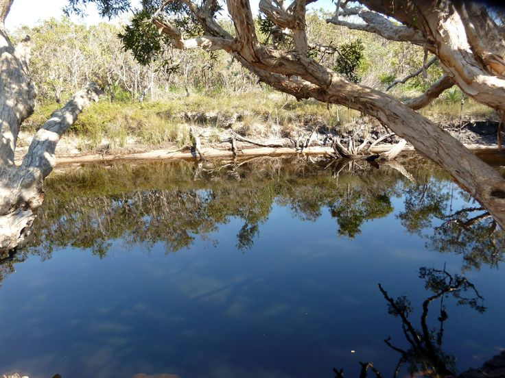 Photographer: Miss Manjari Hayes 8yrs   Title: Jerusalem Creek, Black Rocks   Comment: Warm creek for swimming and kayaking, I had lots of nature fun with my friends.   © Nature Play QLD 2016