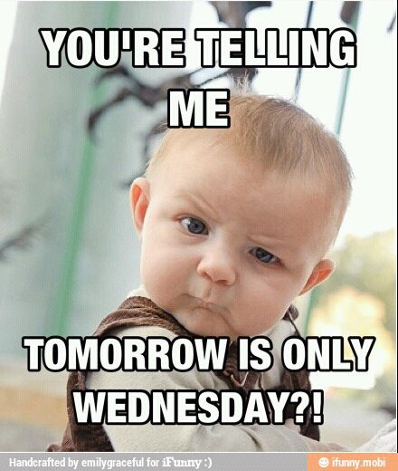 Funny Meme Wednesday : Its only wednesday it s tomorrow boo