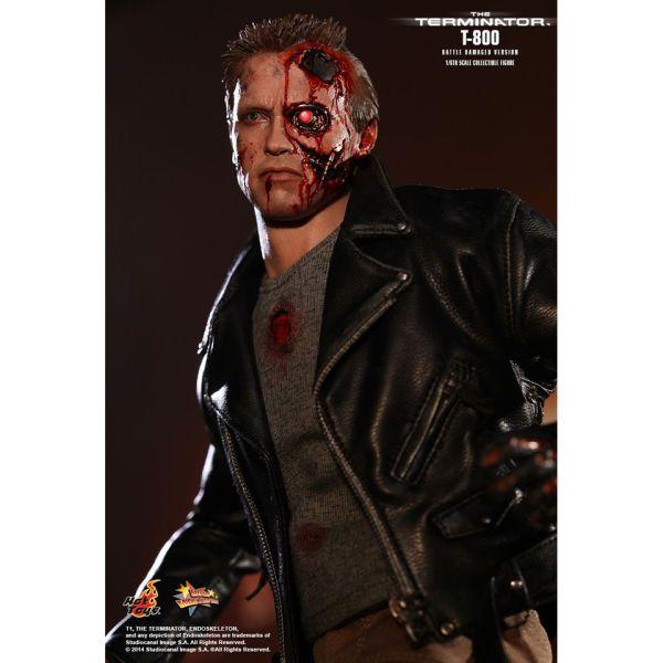 Hot Toys T-800 Battle Damaged The Terminator Movie Series 1:6 Scale Figure