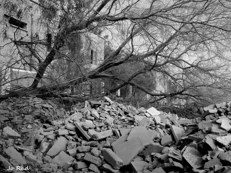 Failaka Island after war. So many years... Photo: Jo Rad