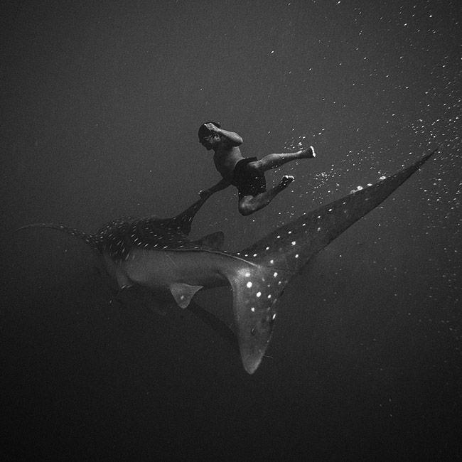 Black and white underwater photography by Indonesian photographer Hengki Koentjoro