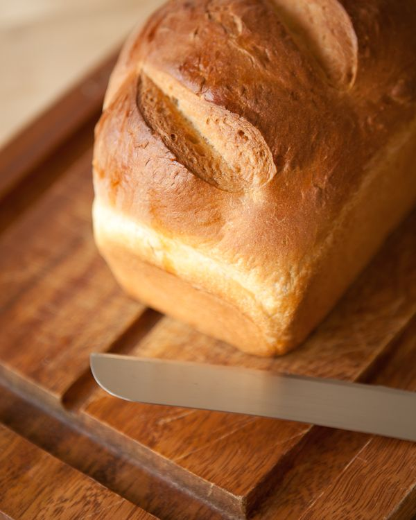 JAMES BEARD'S HOMESTYLE BREAD - 2 1/4 teaspoons of active dry yeast (1 packet)  2 cups warm milk (100°F-115°F)  2 tablespoons granulated sugar  1/4 cups melted butter  1 tablespoon salt  5-6 cups of all purpose flour  1+ teaspoon olive oil or butter for the rising bowl  Soft butter to coat two bread pans  1 egg, lightly beaten