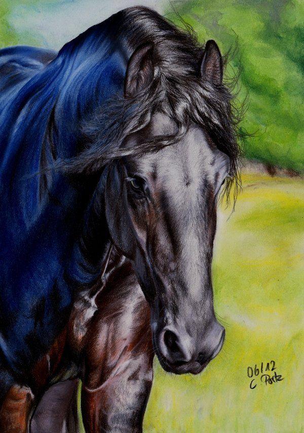 Friesian Horse III by ManiaAdun on deviantART ~ traditional pastel & mechanical pencil art