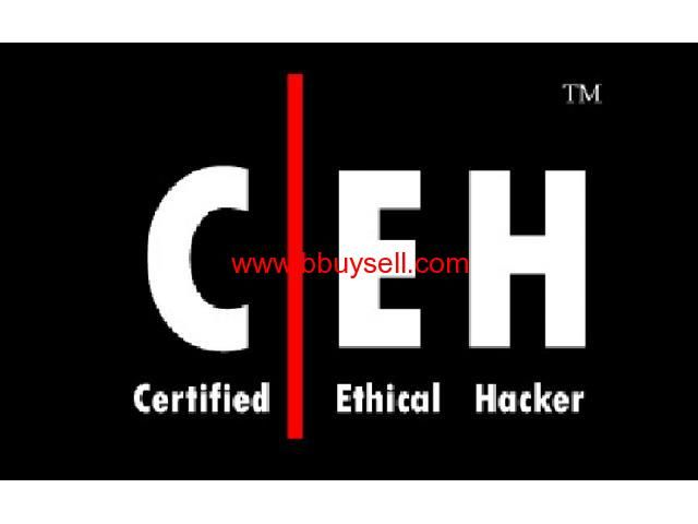 35 best Information Security images on Pinterest Computer - certified ethical hacker resume