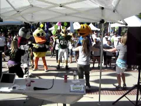 Mascots doing Zumba at the Cystic Fibrosis Great Strides Walk in Sacramento, CA. Dinger from Sacramento RiverCats, Quackals from Quick Quack Car Wash, Good Neighbor Bear from State Farm Insurance, Herky the Hornet from California State University, Sacramento and Goldie from Golden One Credit Union.