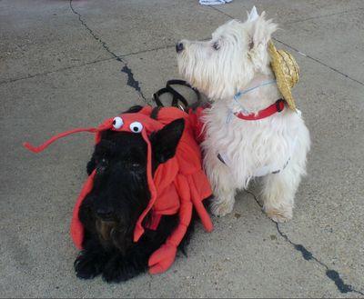 a farmer and a crab??