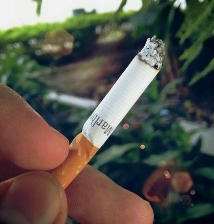 El tabaco es uno de los mayores enemigos de la sociedad existentes hoy en día. Es el responsable de millones de muertes en el mundo y tremendamente perjudicial para nuestro organismo. Sin embargo, dejar de fumar es muy complicado debido a que los...