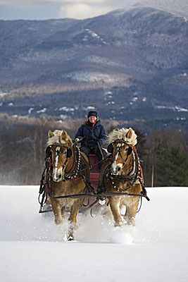 Trapp Family Lodge Horse-Drawn Sleigh rides by Trapp Family Lodge, via Flickr